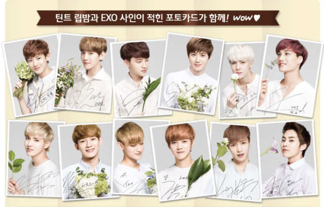 Nature Republic Photocard Set.version.2